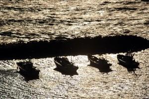 係留された漁船