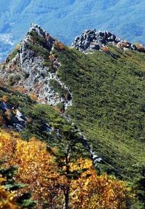 金峰山への道