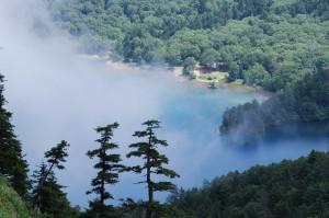 志賀山から大沼池2038