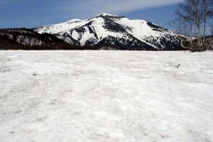 雪原と至仏山